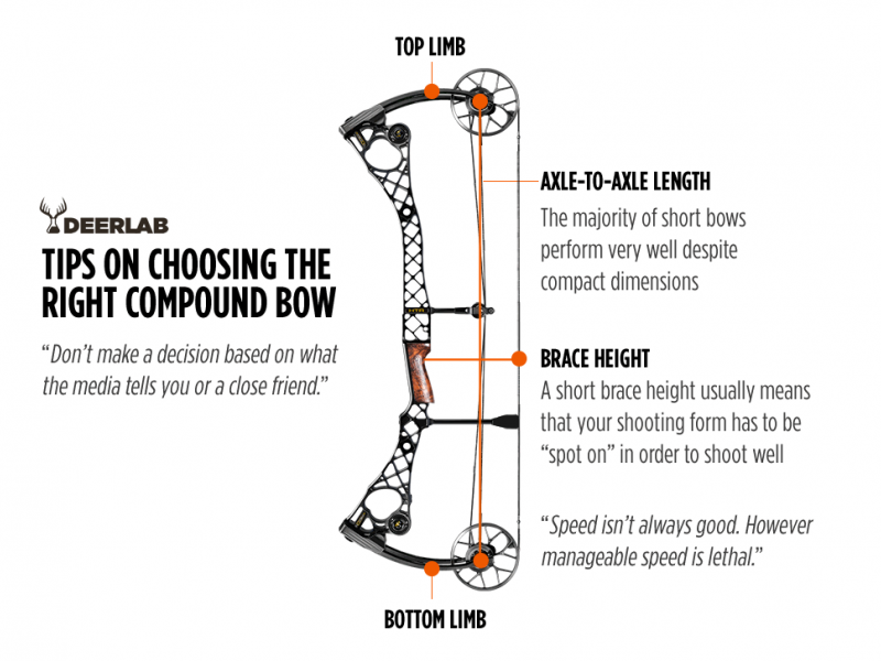 choosing the best compound bow for you - the best and most complete hunting  tips