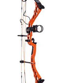 Diamond By Bowtech Prism compound bow 02