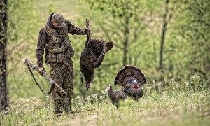 0505886c6c70f 5 Tree Stand Safety Tips For Deer Hunters - The Best And Most ...