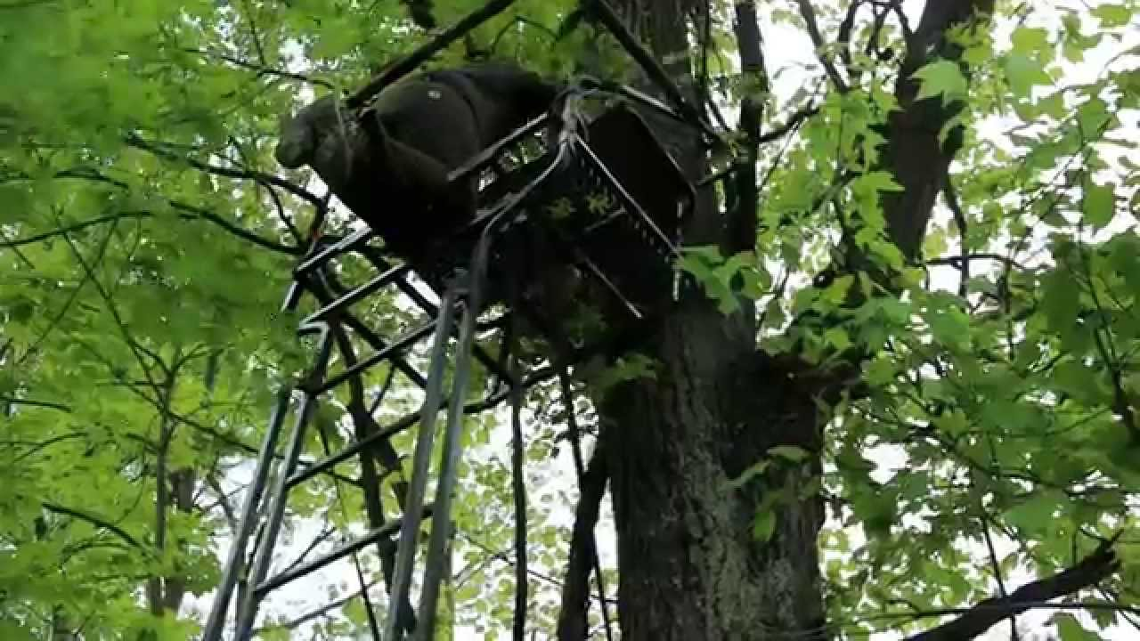 Tips On How To Hang A Deer Hunting Ladder Stand Safely