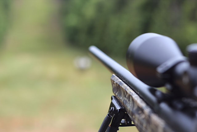 Remington 783 Rifle Review Budget Hunting
