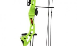A Cool Compound Bow For Younger Archers
