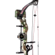 An Excellent Performance But Cheaper Compound Bows For Hunting