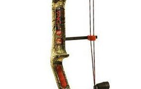 PSE Dream Season compund bow