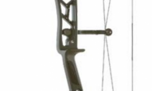 Elite Option Series bows