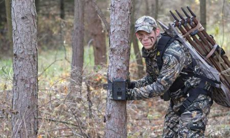 Trail Cam Theft